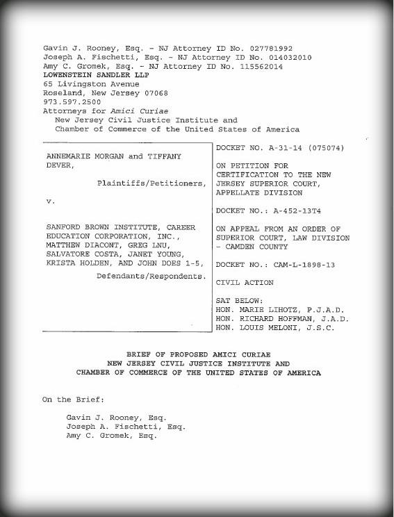 NJCJI's Brief